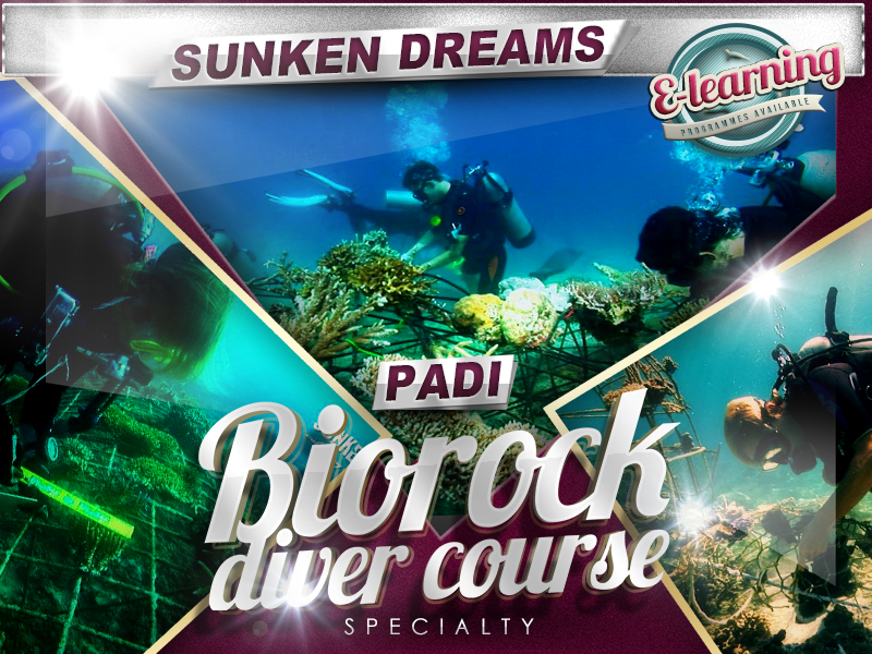 Sunken Dreams PADI Biorock Specialty Course