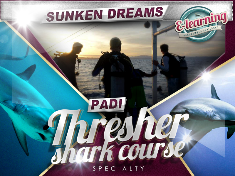 Sunken Dreams PADI Thresher Shark Diver Specialty