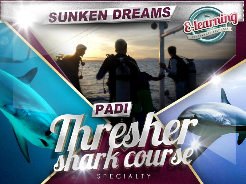 Sunken Dreams PADI Thresher Shark Diver Specialty