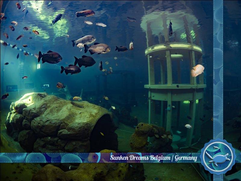 Dive-destinations-Images-bel6