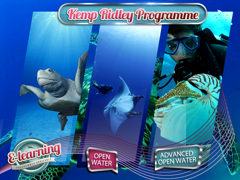 The Kemp Ridley - Level 1 Academy Course Package Plan