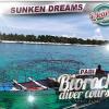 PADI Biorock Diver Specialty Course