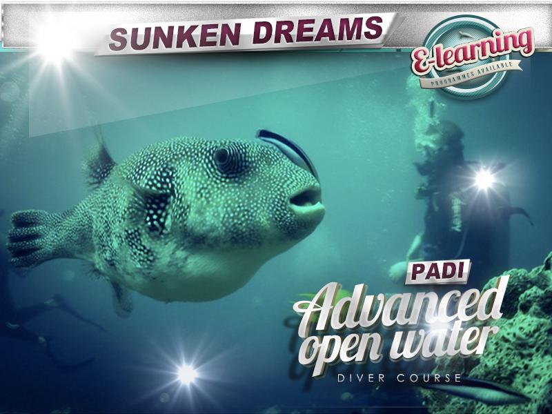 The Hawksbill Plan: PADI Advanced Diver Certification