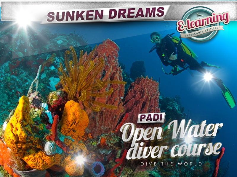 Padi Open Water Diver Sunken Dreams Scuba Diving Academy