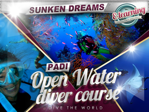 PADI Open Water Diver: Open Water Dives @ Wraysbury Dive Centre | Wraysbury | United Kingdom