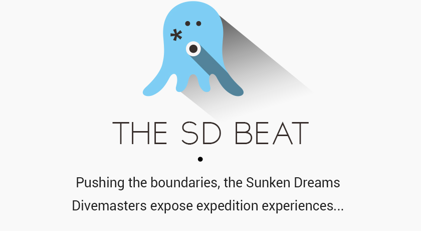The SD Beat