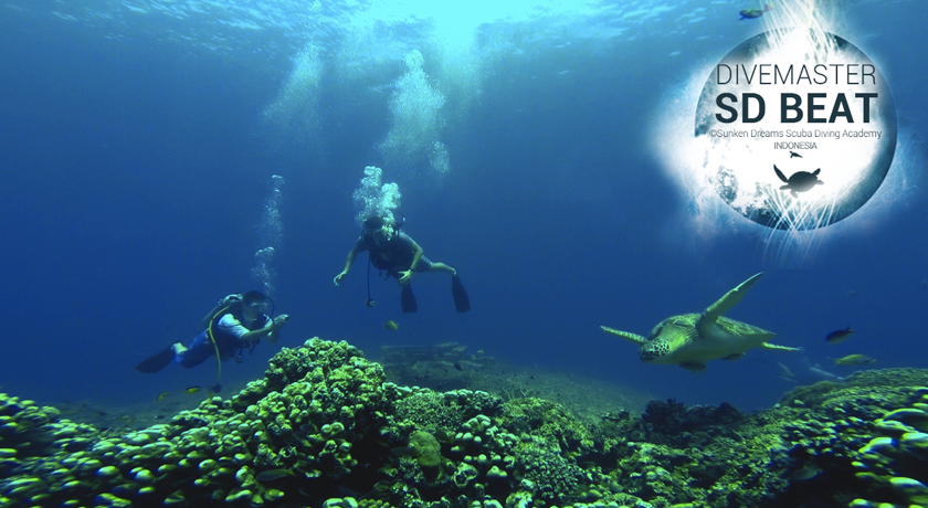 Sunken Dreams Expedition Indonesia