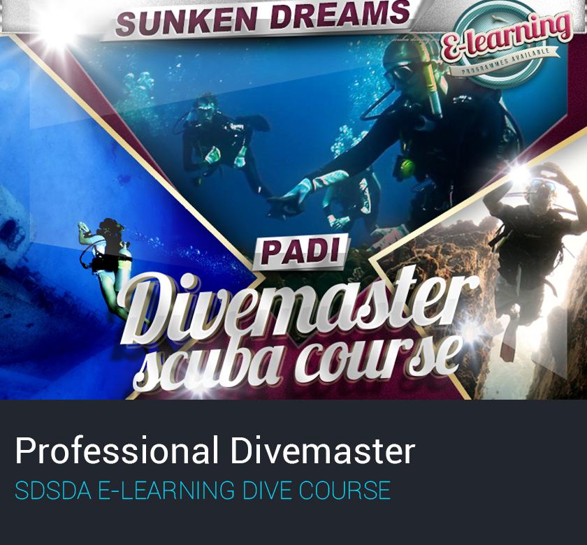 Professional Divemaster