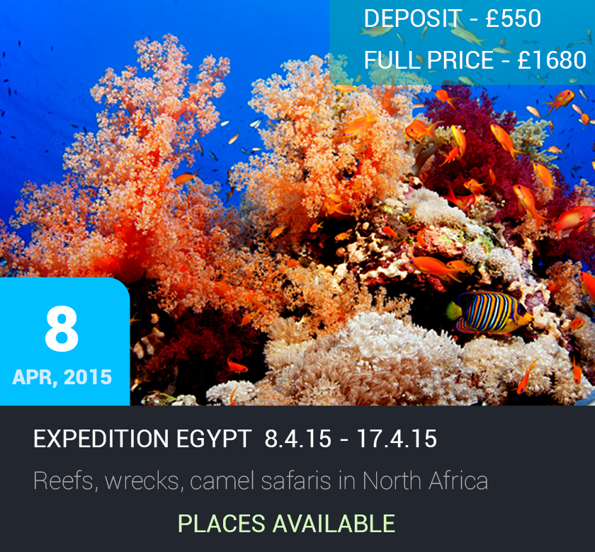 Expedition Egypt