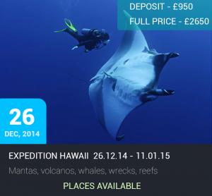 Expedition Hawaii @ Big Island, Maui, Oahu | Hawaii | United States