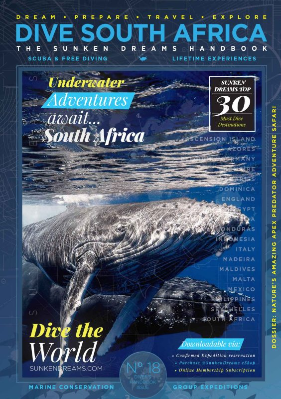 Sunken-Dreams—Handbook-Cover-Poster-south-africa-10