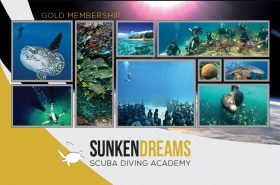 SDSDA-Memership-Cards-Gold