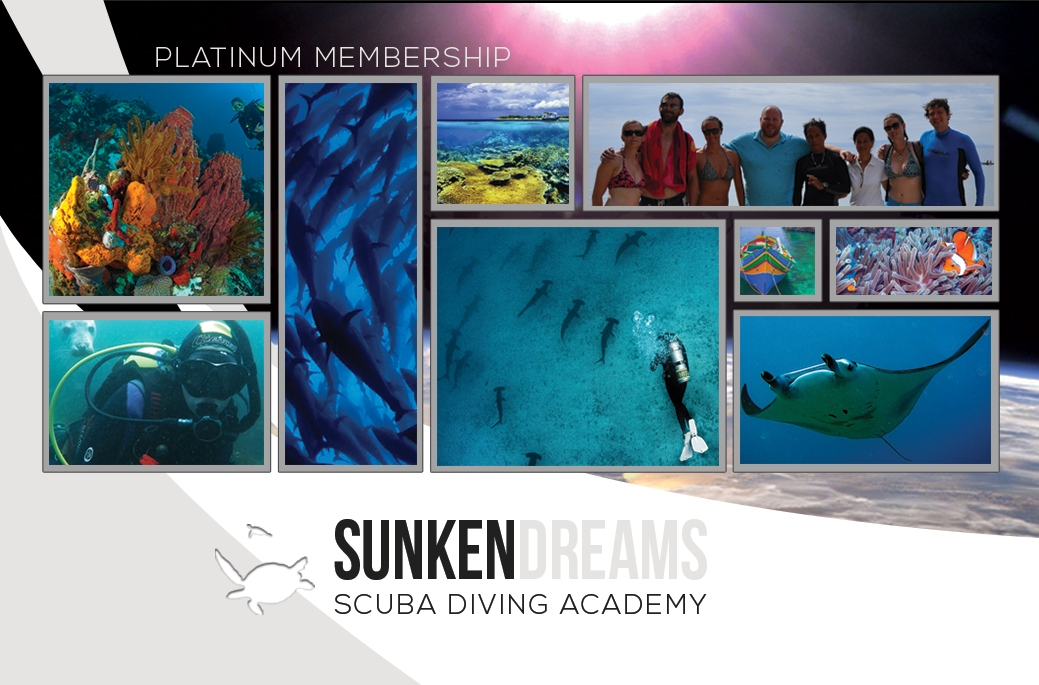 SDSDA-Memership-Cards-Platinum