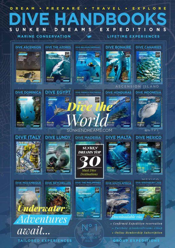 Sunken-Dreams—Handbook-Cover-Poster-10